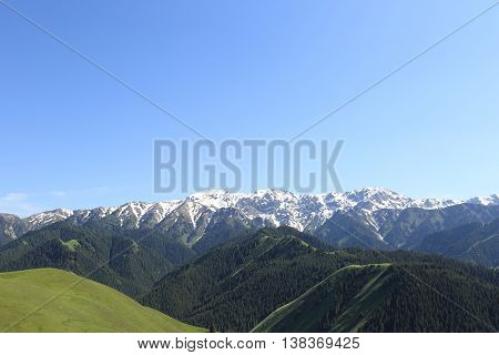 beautiful landscape with mountain forest and snow capped mountain under blue sky