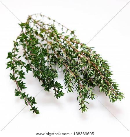 Fresh organic thyme herb, isolated on white. Photographed with shallow depth of field.