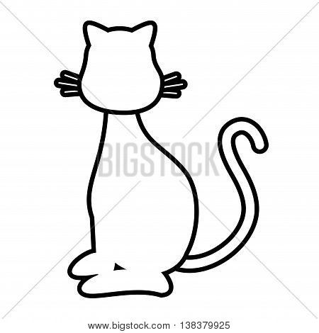 Cat cute pet graphic design, vector illustration isolated icon.