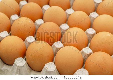 Fresh eggs in package