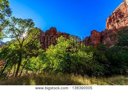 Green, red, and blue colors in Zion National Park