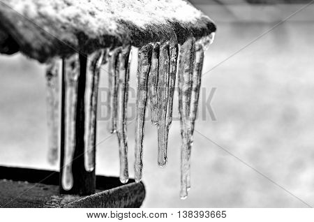Birdhouse with icicles on a gray background in black and white
