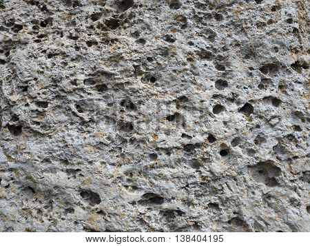 a texture of a limestone rock with holes