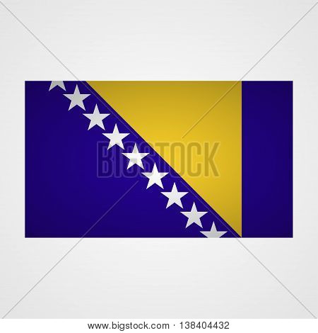 Bosnia and Herzegovina flag on a gray background. Vector illustration