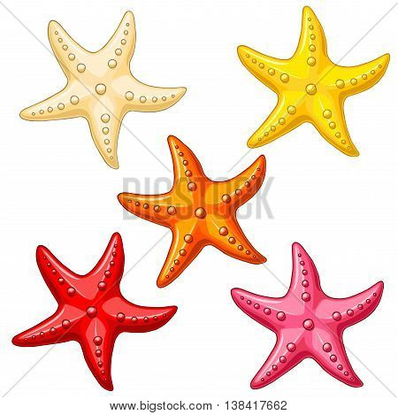 Set five multi-colored cheerful cute starfishes on a white background. Red, yellow, beige, pink and orange cartoon starfishes.