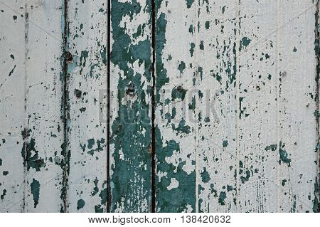 Peeling paint white and green color on old wood wall