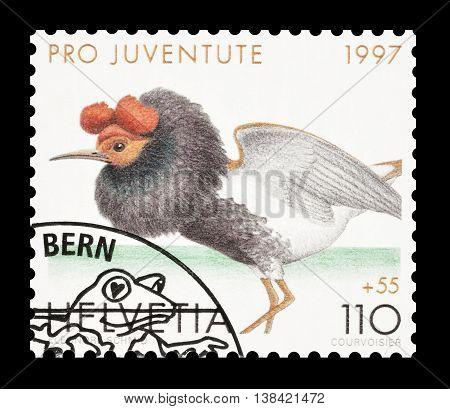 SWITZERLAND - CIRCA 1997 : Cancelled postage stamp printed by Switzerland, that shows Ruff.