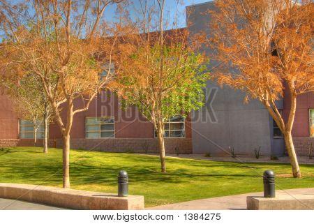 Modern School Campus
