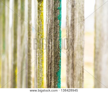 Vertical vintage fence border bokeh background backdrop