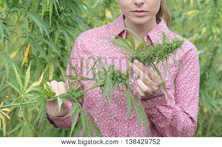 Woman Holding An Hemp Flower