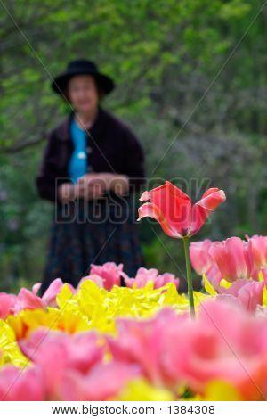 Flores de su juventud