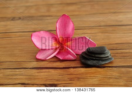 A pink frangipani flower displayed with a stack of pebbles