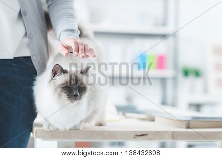 Woman Caressing Her Lovely Cat