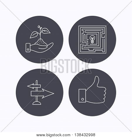 Save nature, thumb up and direction icons. Problem challenge, like linear signs. Flat icons in circle buttons on white background. Vector