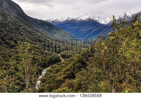 Stream In The Valley On Milford Road, New Zealand