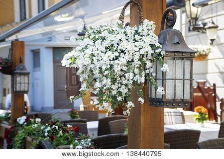 Flower decor and old lamp at an entrance to cafe. Old city of Riga. Latvia.