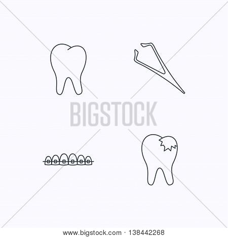 Dental braces, fillings and tooth icons. Tweezers linear sign. Flat linear icons on white background. Vector