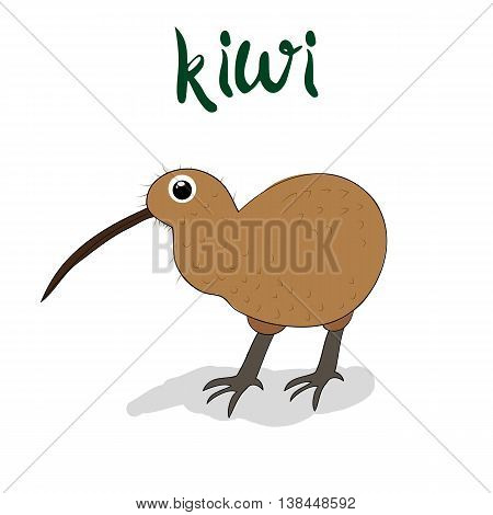 Doodle Art Print Of Kiwi Bird Hand Drawing For Your Design Illustration