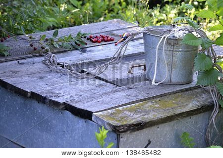 on the wooden cover of the well worth a bucket tied with a rope in the background scattered red berries