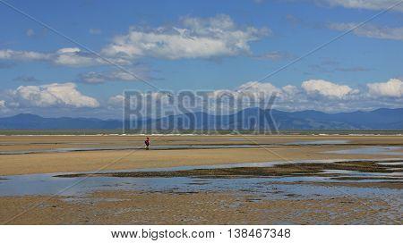 Sandy Marahau beach. Landscape on the South Island of New Zealand.