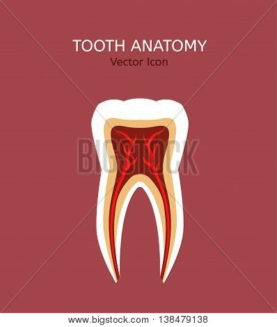 Tooth icon vector illustration. Medical concept in flat modern style. Editable image in natural colours on a pastel pink background. Logotype or infographics element.