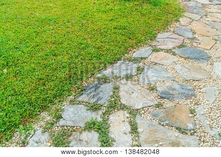 The Walk path in the park with green grass