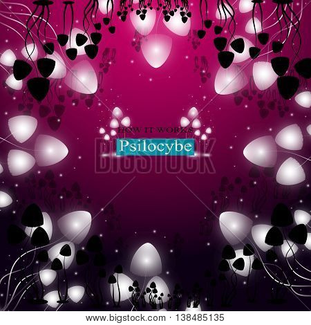 Hallucinogenic Mushrooms Psilocybe