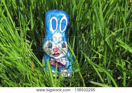 Blue chocolate easter bunny isolated in grass