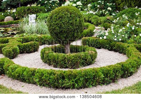 Background of garden design. Landscaping in park with road, shorn trees and lawn