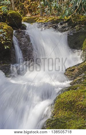 Rushing Cascade of the Huskey Branch Falls in the Great Smoky Mountains of Tennessee