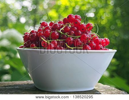 Ripe red currant ripe berries in bowl