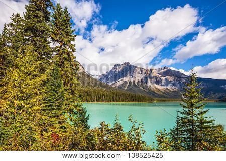 Magic Emerald Lake in Yoho National Park, Rocky Mountains. The green lake surrounded by a coniferous forest