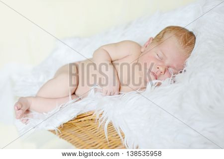 sweet newborn baby sleeping in the fur