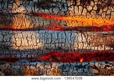 Bonfire. Burning wood coals.