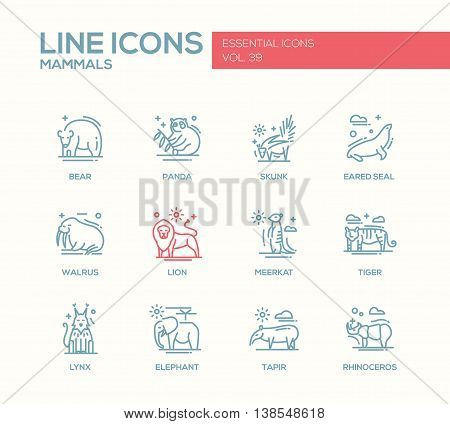 Mammals - set of modern vector plain line design icons and pictograms of animals. Bear, panda, skunk, eared seal, walrus, meerkat, lion, tiger, lynx, elephant tapir rhinoceros