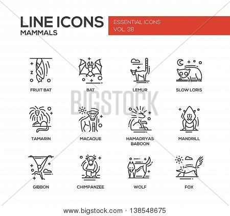 Mammals - set of modern vector line design icons and pictograms of animals. Bat, lemur, slow loris, tamarin, macaque, hamadryas baboon, mandrill, gibbon, chimpanzee, wolf fox