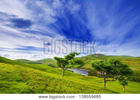Landscape Scenery Of Green Valley With Trees, River And Cloudy Blue Sky