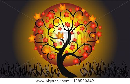 Colorful  autumn tree isolated on beautiful dark background