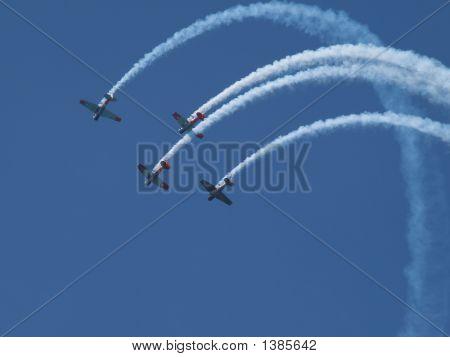 Aerobatic Harvards