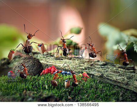 Ants in the woods with trolleys for supermarket and packets are queued for berries. The concept of shopping in a store berries vitamins queues shopping