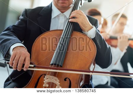 Professional Cello Player