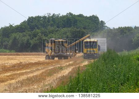 NEDELISCE, CROATIA - JULY 02, 2016: Combine harvester in action on wheat field, unloading grains in Nedelisce, Croatia on July 02, 2016