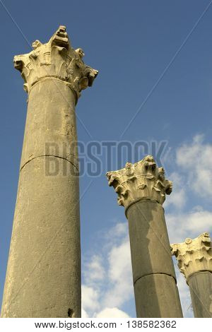 ancient roman old town ruins of Volubilis in morocco