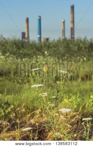 Factory with tall chimneys. Power plant chimneys tower in Bucharest city view from Vacaresti Nature Park.
