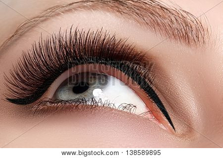 Macro Shot Of Woman's Beautiful Eye With Extremely Long Eyelashes