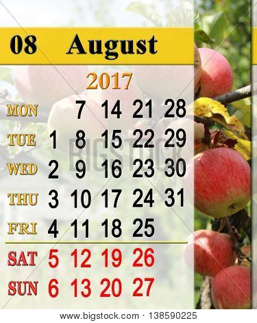 beautiful calendar for August 2017 year with ripe apples on the branch. Calendar for printing and using in office life.