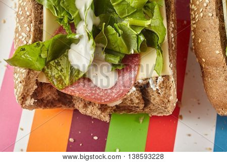 Sandwich on a serving tray. Food concept