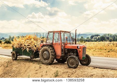 Autumn field works -Tractor laden with dry stalks of corn