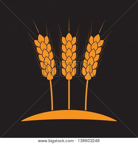 Wheat ears or rice icon. Agricultural and crop symbols isolated on black background. Design element for bread packaging or beer label. Vector illustration.
