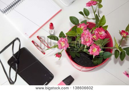 Flowerpot And Other Things In A Table